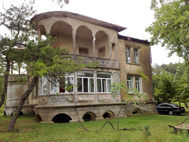Dom/apartment, Batumi, Tsikhisdziri - Batumi - Apartment