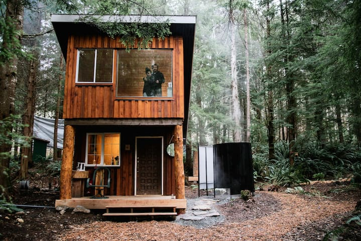 Fern Gully: Redwood Cabin
