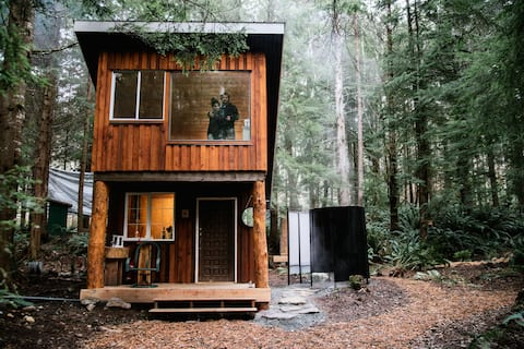 Ferngully Cabins: Redwood Cabin