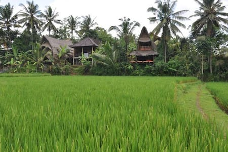 Eco Lodge Ubud, Wagon Top, Bali