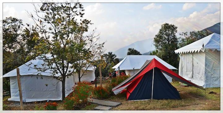Luxury Camping in Bir Billing, Himachal