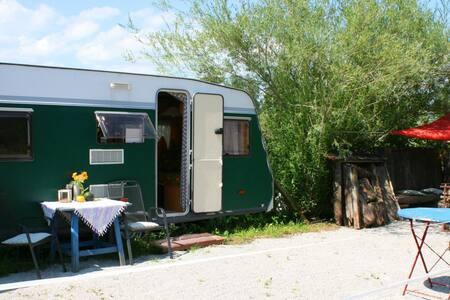 Trailer neben den Pferden - Ohlstadt - Camper/RV