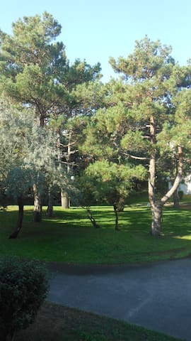 Comfy One-bedroom flat with private car park - Aix-en-Provence - Appartement