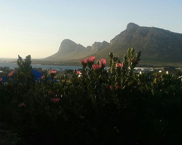 Homely Hospitality for YOU! - Pringle Bay - House