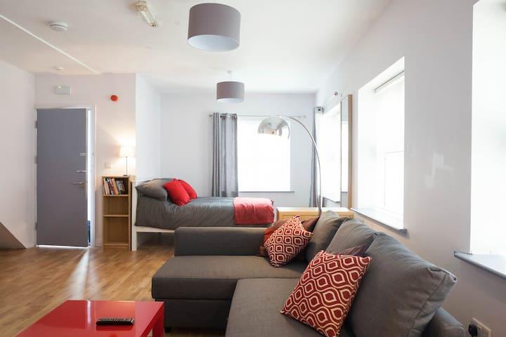 Studio apartment  Grand Canal Dock - Dublin - Wohnung