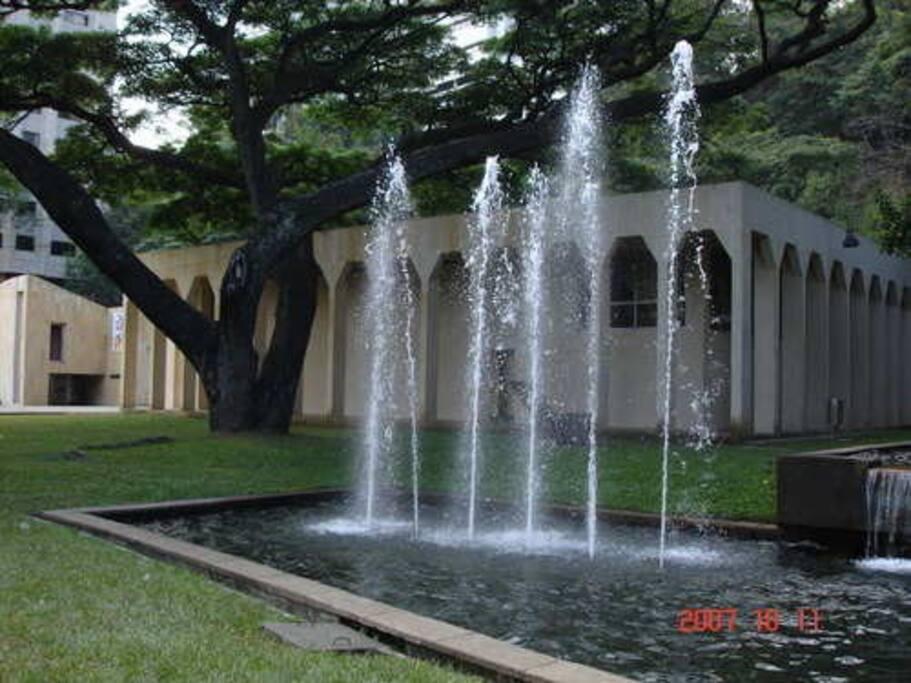 Museo de Arte Moderno La Tertulia
