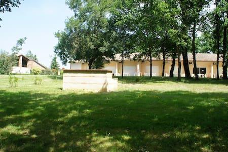 Meublé entre Toulouse et Montauban - Dieupentale - Apartment - 1