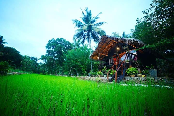 Aliya Riverside & Safari Resort - Wooden Cottage
