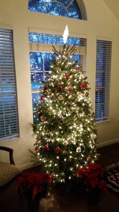 Christmas tree at the entrance