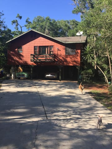 Spacious studio on 3 acre farm. - DeLand - Leilighet