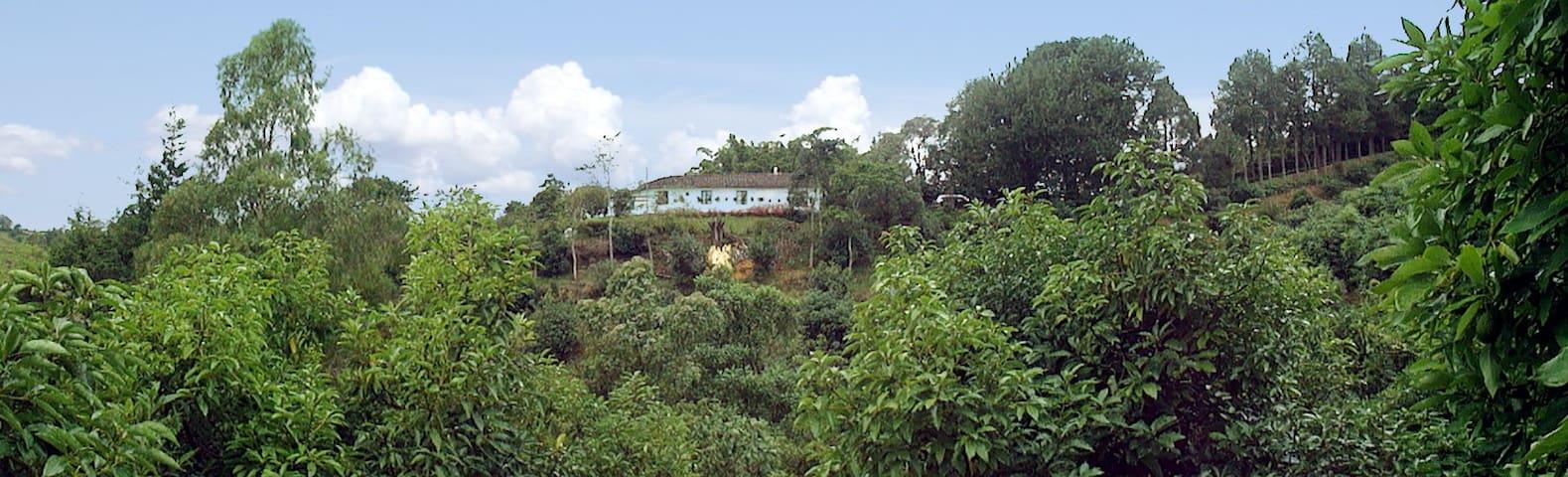 Acogedora Finca cerca a Rionegro Paz y Naturaleza