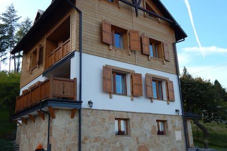 Willa Tea and Ski, Apartament z 3-sypialniami - Krynica-Zdrój