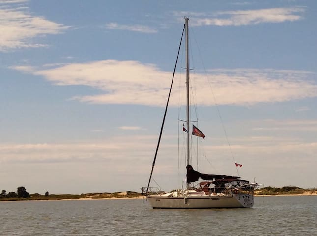 36ft Sailing Yacht with private cabin, Skippered