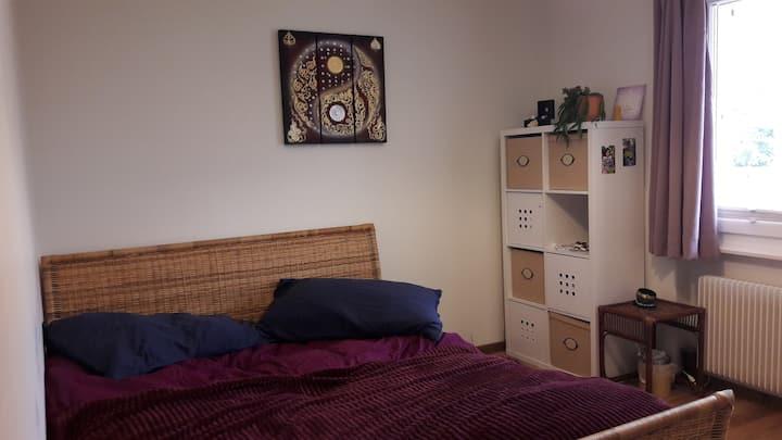 Chambre  dans magnifique appartement à Duillier