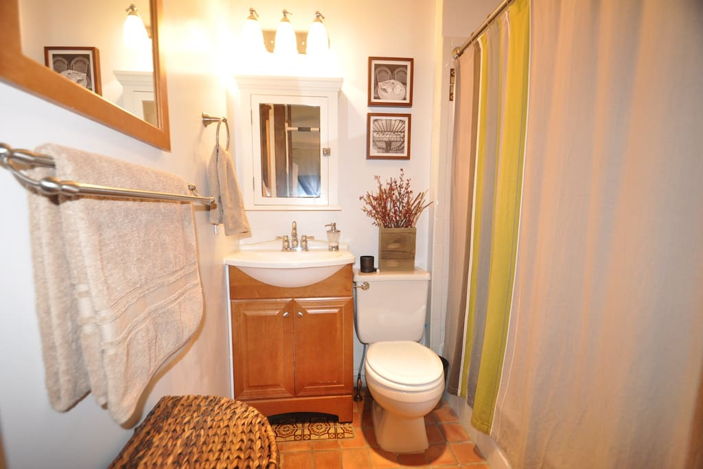 Renovated Bathroom with Shower annd Tub