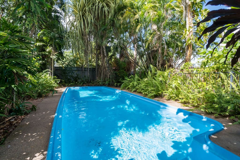 Perfect Pool !