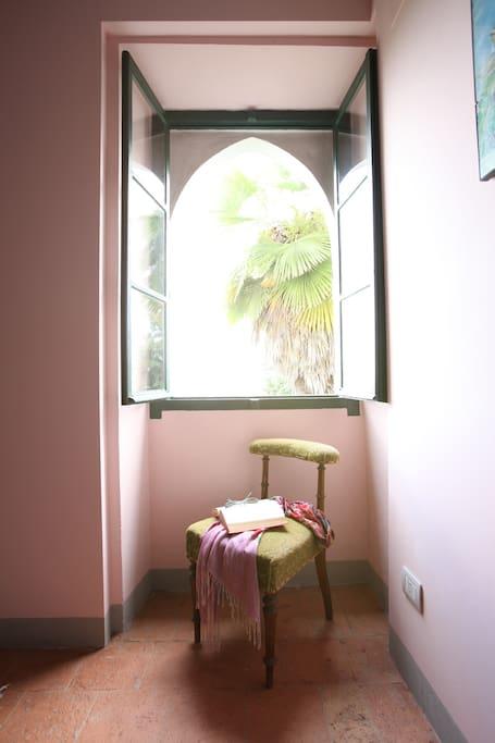 finestra con vista sul giardino
