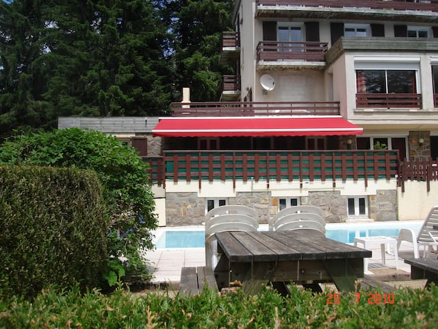 SUPERBE APPARTEMENT - Laveissière - Apartment