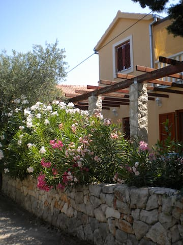 The house sorraunded by rose-bays and olives