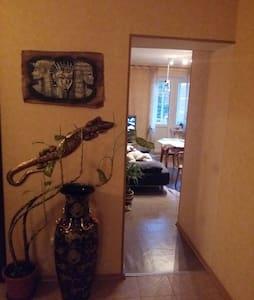 Комната в Пушкине - Пушкин - 公寓