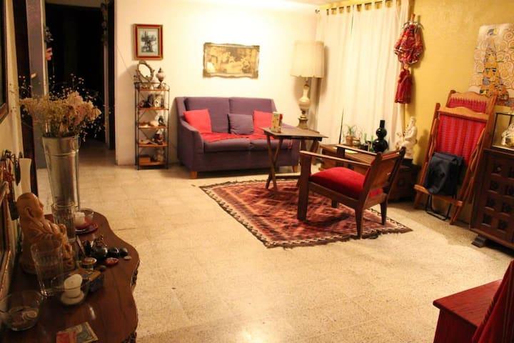 Nice room in a lovely apartment - Ciudad de México - Leilighet