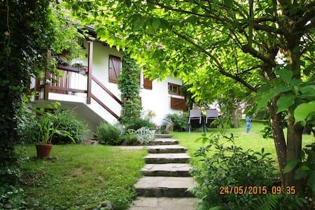 Villa Blocher: ruhig, komfortabel, - Gengenbach - Wohnung