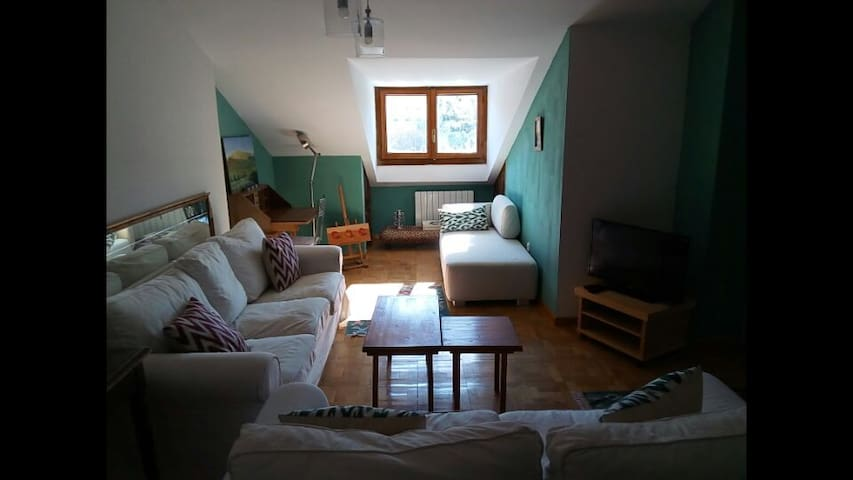 Cozy Apartment with lots of light - la granja de San Ildefonso  - Huoneisto