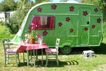 Poppy: cute caravan on pretty farm. - Saint Austell - Wohnwagen/Wohnmobil