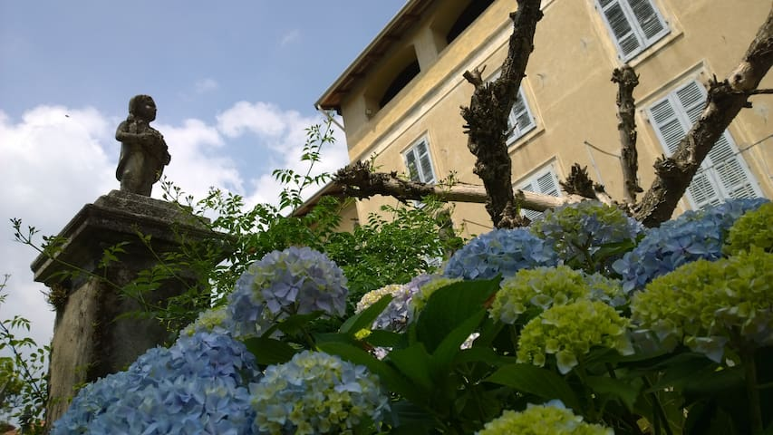 Palazzo Toni sul Lago d'Orta #1 - Auzate - House