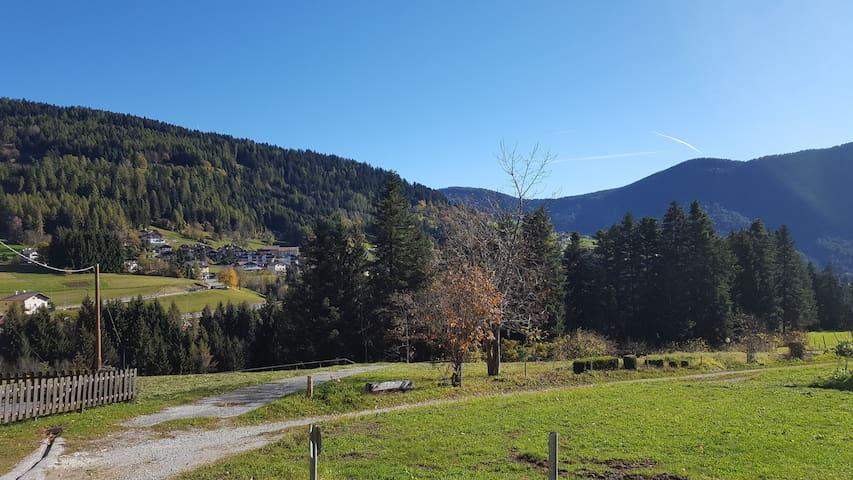Casa in Val di Non circondata dal bosco.