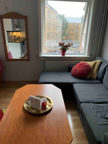 Studio 15min walk to Nationalthetret , free Wifi