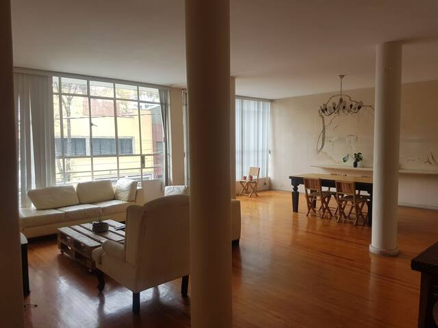 Spacious apartment in the heart of Condesa