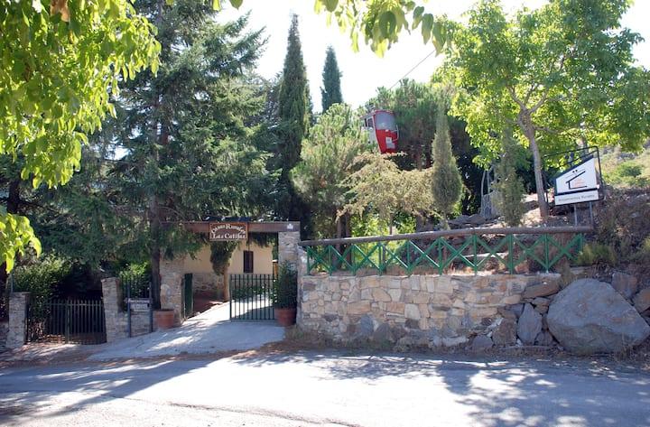 Casas de ensueño en Sierra Nevada 7