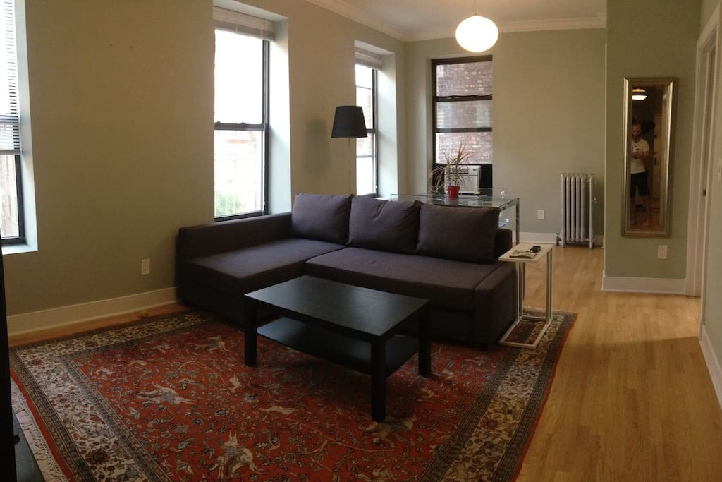Sunny 2br condo for 1 4 travelers condos zur miete in for Schlafsofa new york
