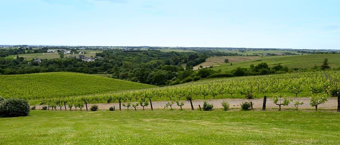 Loire valley - Chateau Soucherie - Beaulieu-sur-Layon - บ้าน