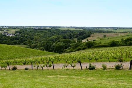 Loire valley - Chateau Soucherie - Beaulieu-sur-Layon