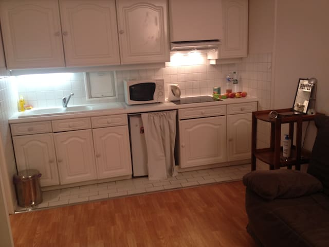 Kitchen with all equipments : Microwave, oven (recently not on the picture), fridge, all ustensils available.