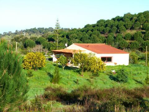 Cosy Clayhouse in rural Alentejo