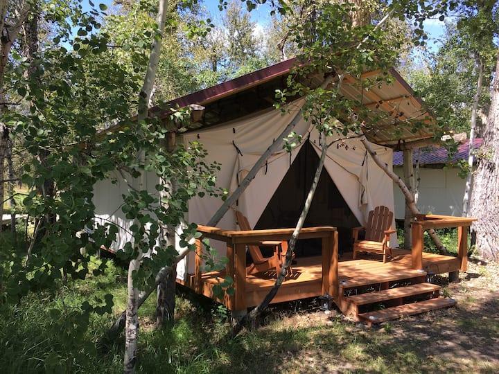 Quaking Aspen Ranch, Mustang, Glamping Cabin