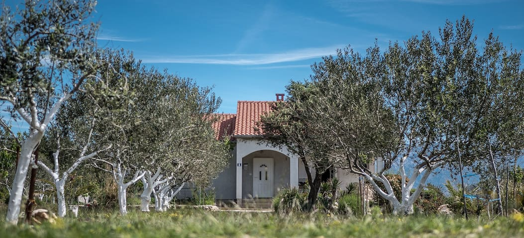 Vrsi Zadar - entire house and garden near beach