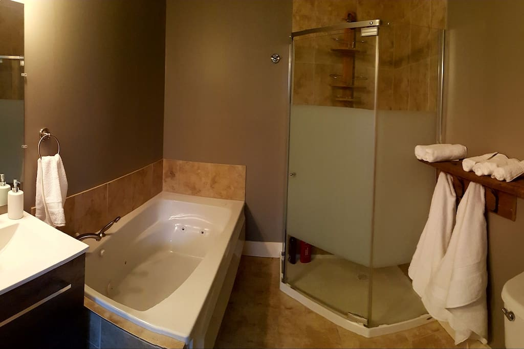 4 piece bath with jet tub  and stand up shower