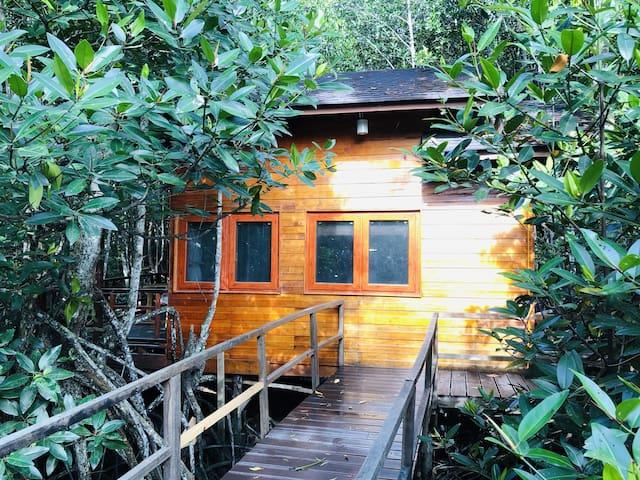 【逅客】近红树林湿地 水上森林独栋木屋