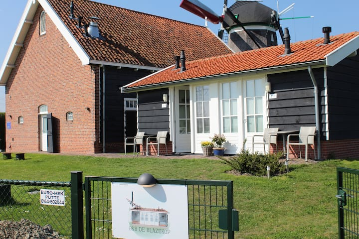 Stay in a tiny house next to a windmill!