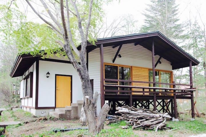 風景を描写する家*Karuizawa rental house*星野リゾートとんぼの湯(車3分)