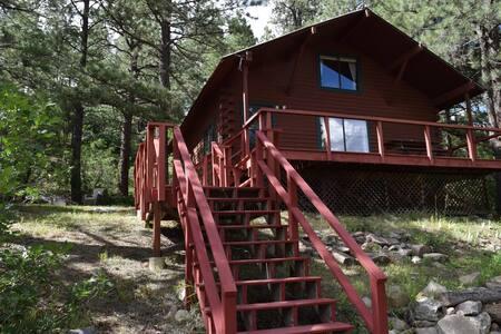 Cozy Mountain Cabin! - Pagosa Springs