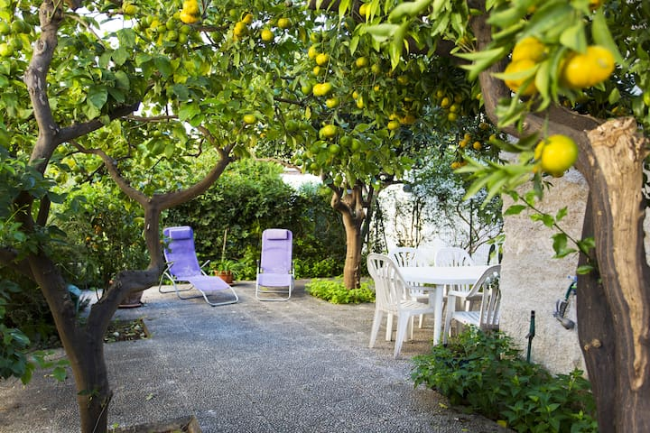 il giardino dei limoni