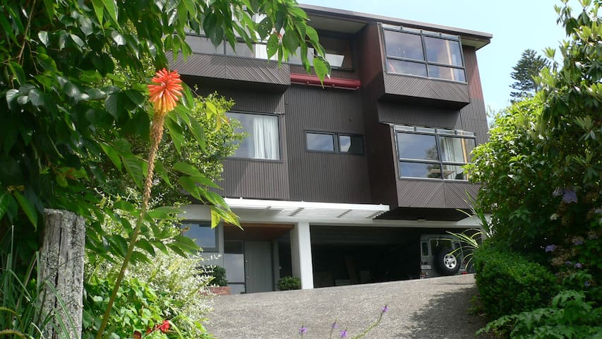 Mount Hobson Studio in Remuera with View