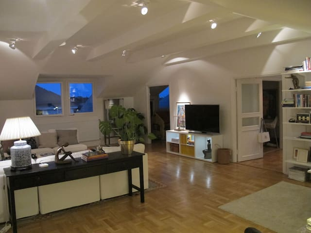 Spacious penthouse in top location  - Stockholm - Loft