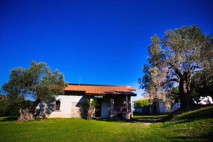 Agriturismo A Pignara - L'Ulivo - Locri - Casa