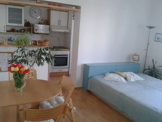 """""""letní"""" byt - Třeboň - Apartament"""